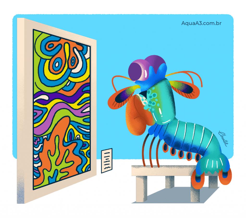O camarão mantis possui uma super visão