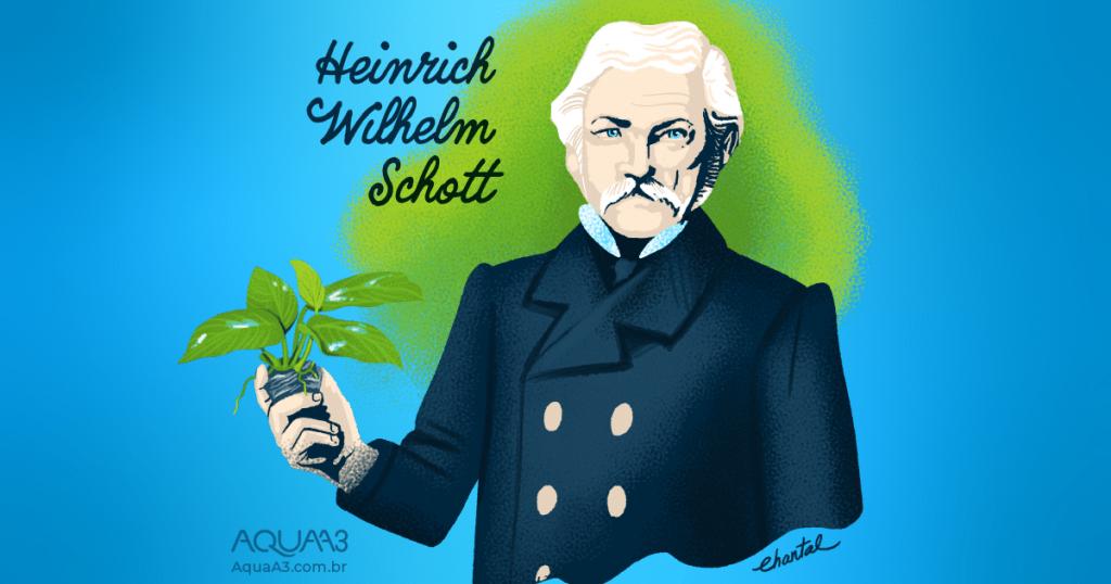 Arte do Botânico austríaco Heinrich Wilhelm Schott Anubias